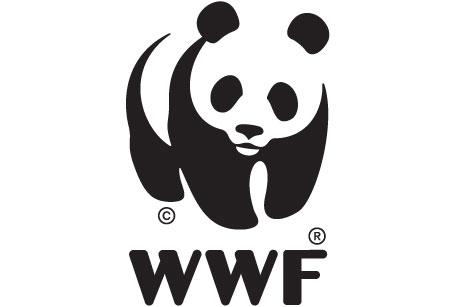 Världsnaturfonden ansvarar för Earth hour.