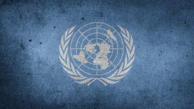 På måndag är det FN-dagen.
