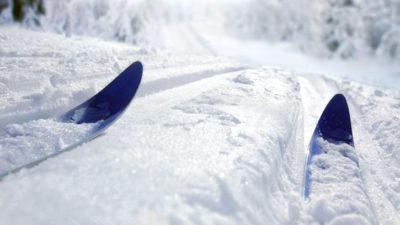 Nu har världscupen i längdskidåkning börjat. I helgen fortsätter den i Norge. Foto: Mikael Damkier/Shutterstock.com