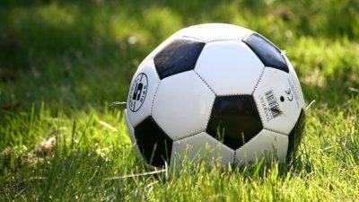 En fotboll ligger i gräset