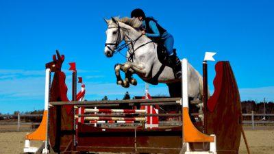 En ryttare på sin häst hoppar över ett högt hinder.
