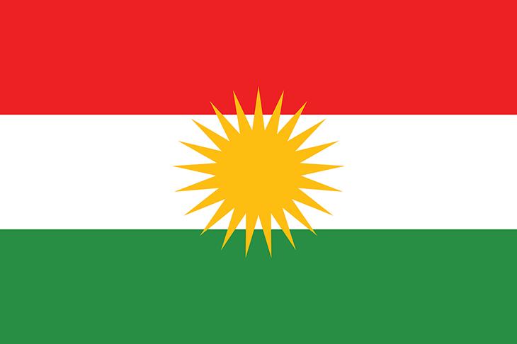 Flaggan har tre ränder, överst en röd, i mitten en vit och längst ner en grön. Mitt på flaggan är en gul sol.