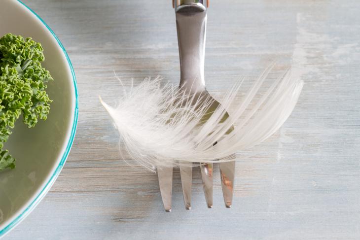 En vit liten fjäder ligger på en gaffel.