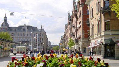 Längst fram syns en stor kruka med blommor på en gata. Bakom syns resten av gatan och flera gamla hus.