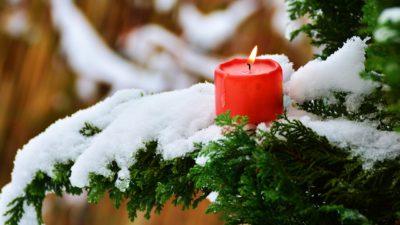 Ett rött ljus brinner i en gran med snö