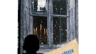 Ett fönster med Albins silhuett framför.