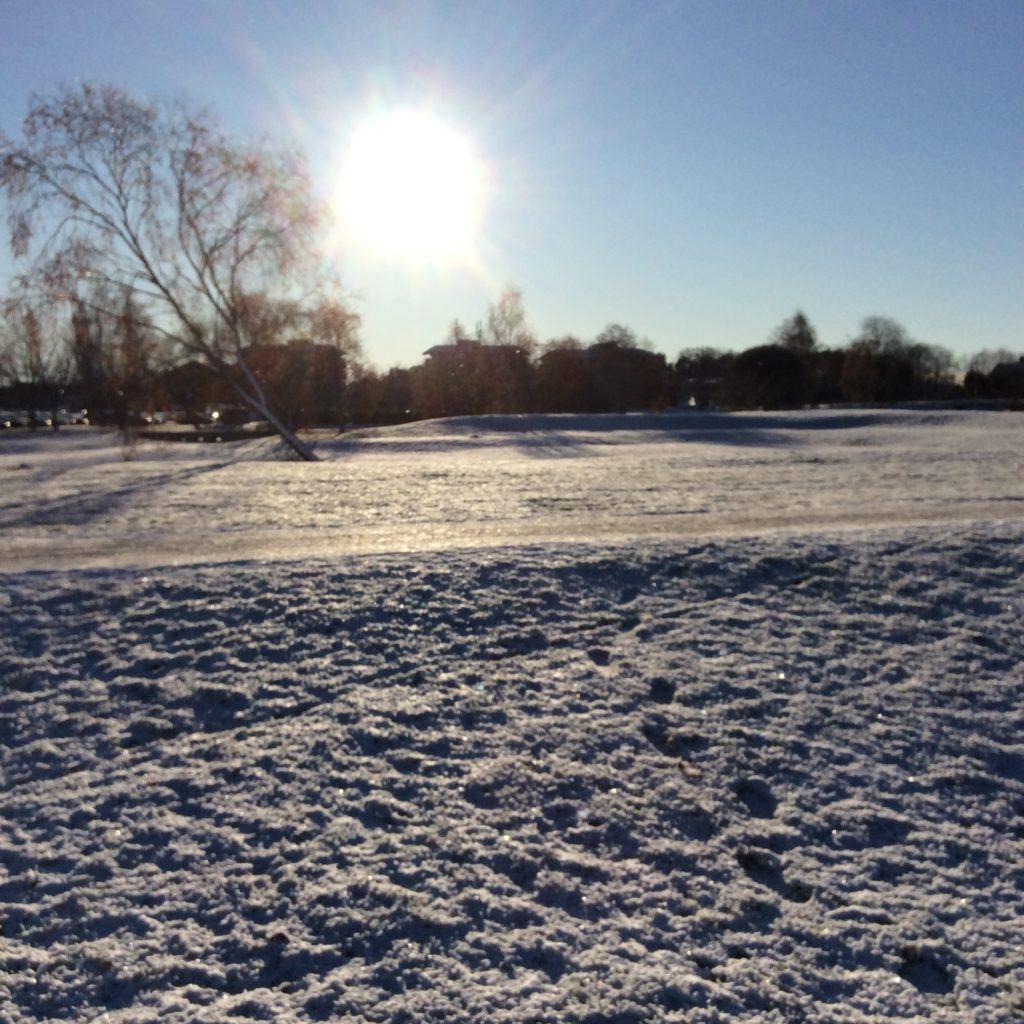 Solen står lågt på himlen. Den nuddar nästan trädtopparna och hustaken, borta vid horisonten. Framför dem ligger snön på marken.