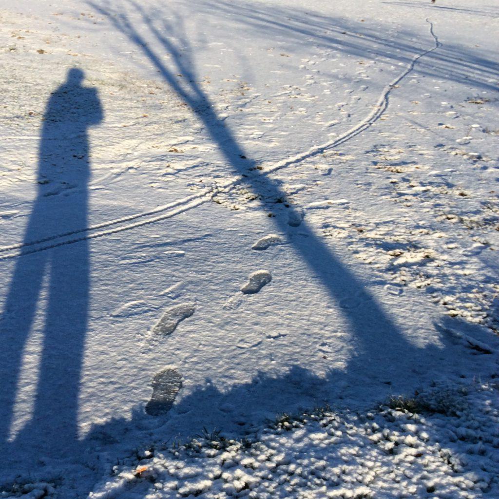 Två långa, blå skuggor. Ett barn och ett träd. På marken ligger ett tunt lager snö.