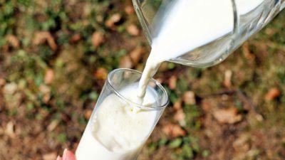 Ett glas komjölk hälls upp från en tillbringare.