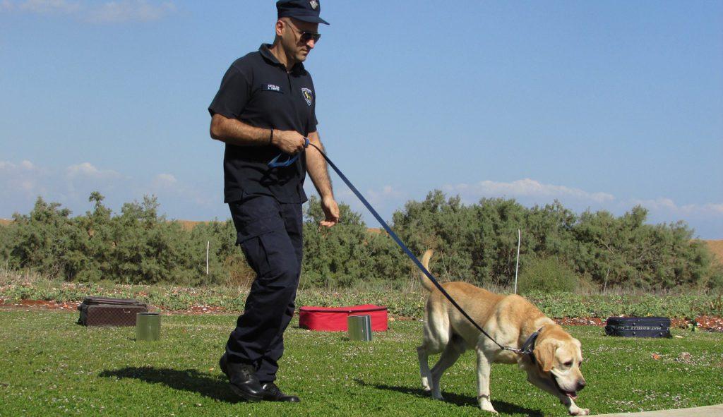 En polis och en hund