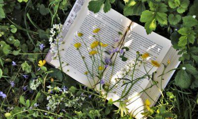 En uppslagen bok som ligger bland blommor och gröna växter.
