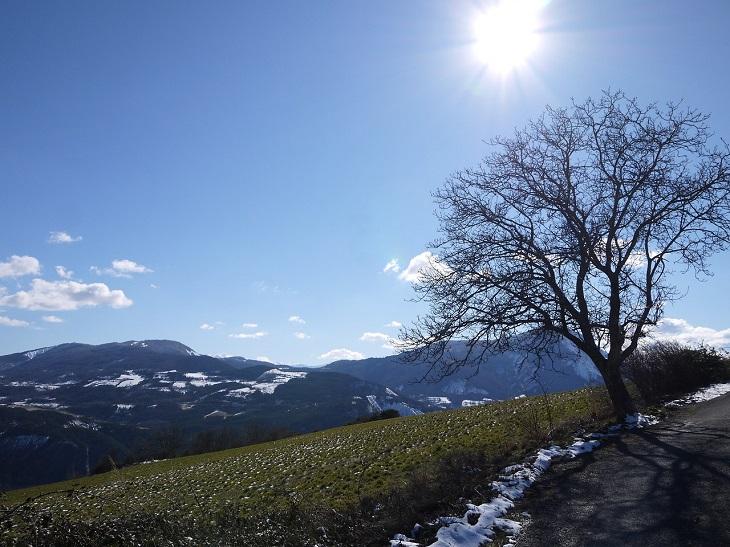 En grön backe. I kanten ligger snö och längs horisonten syns berg. Ett kalt träd avtecknar sig mot en blå himmel där solen strålar.