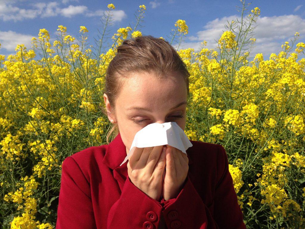 En person står framför massa gula blommor. Hon snyter sig i en näsduk.
