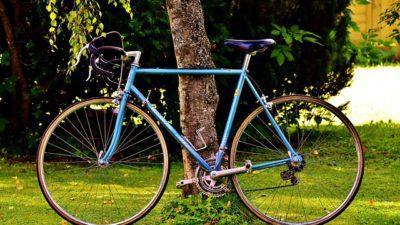 En blå cykel står lutad mot ett träd.