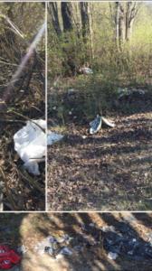 Tre bilder ihopklippta till en. Alla visar olika delar av ett nedskräpat naturområde.
