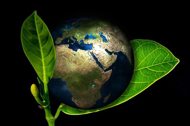 En illustrerad bild på jorden som ligger mellan två gröna blad.