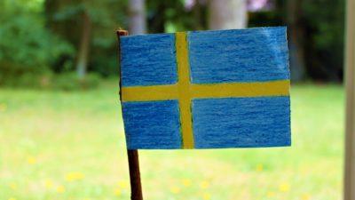 En svensk flagga är ritad med kritor och utklippt. Flaggan sitter på en träpinne. I bakgrundens är det en solig gräsmatta.