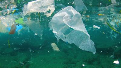 Under ytan i ett grönblått hav. Nära ytan är det fullt av gamla plastpåsar och annat skräp som flyter runt.