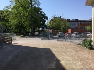 Bild på skolgårdens öppna ingång med ett träd och bilparkering och grusgång.