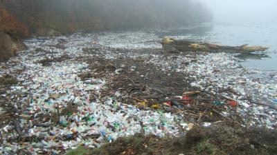 Plastflaskor i vatten