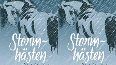 En häst i regnet