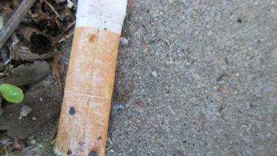 Fotografi på en cigarettfimp