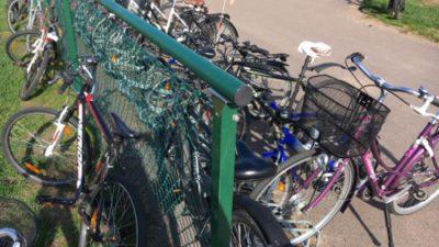 Många cyklar trängs kring ett staket.