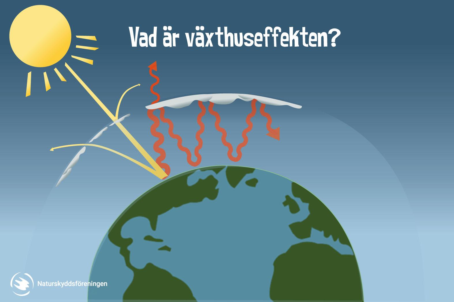 En bild som visar växthuseffekten. Solens strålar når jorden och studsar