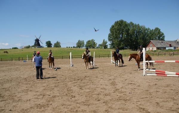 Bild på tränare framför fem elever på hästar.