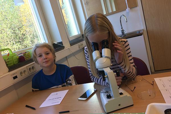 Två elever som kollar på kryp i mikroskåp