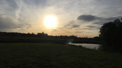 Våtmarkszonen i Esilkstuna precis när solen håller på att gå ned.