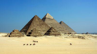 Pyramider i öknen med kameler framför dem