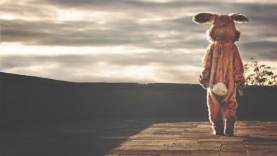 klädd på utklädd kanin