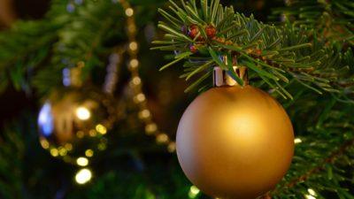 En gren av en gran i närbild. På grenen hänger det en julkula. I bakgrunden syns en annan julkula och en girlang som hänger på andra grenar.