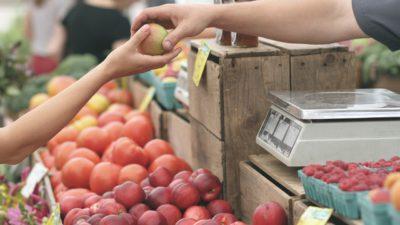 Ett frukstånd. En hand sträcker fram ett äpple till en annan hand.