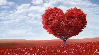 Hjärtformat träd på röd äng