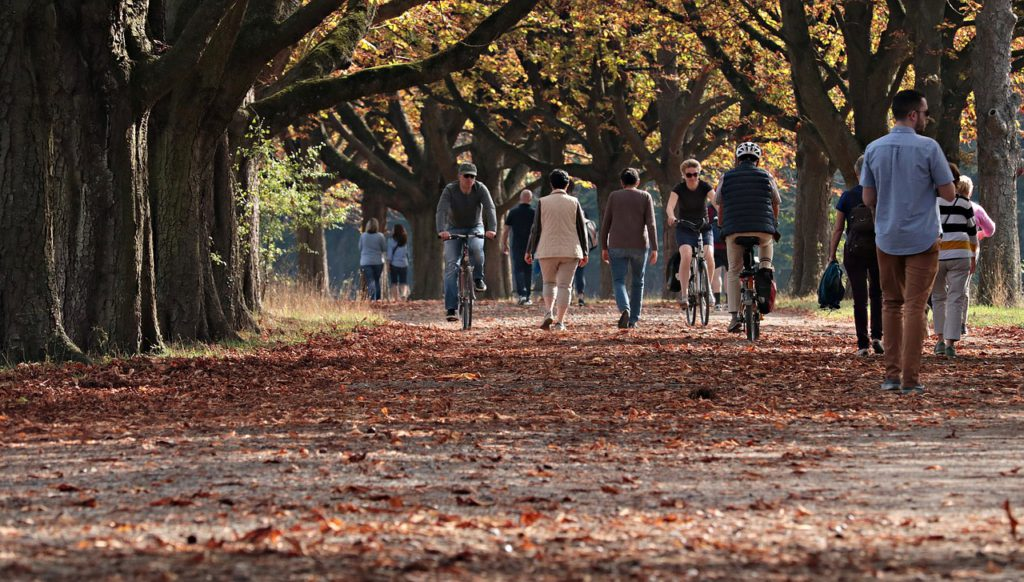 Många människor cyklar och går i en park.