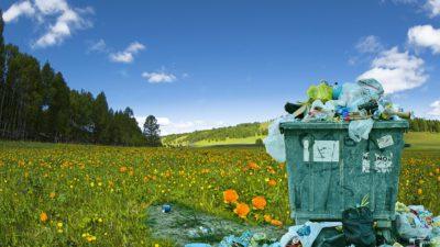 Bilden visar en stor, överfull soptunna med burkar och skräp. Den står mitt på en öppen och vacker äng med fina blommor.