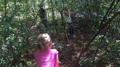 Barn leker i buskage