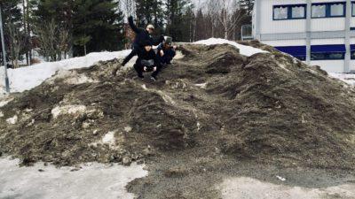 Elever högst upp på en grushög.