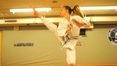 Foto på ju-jutsu-spark.