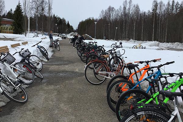Foto på cyklar och snö.