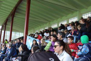 Publik på fotbollsmatch
