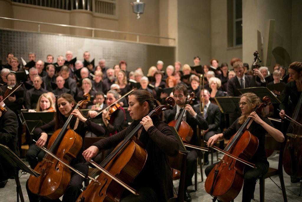 Bild på en stor symfoniorkester som är i full gång att spela en låt. Längst fram på bilden sitter de som spelar cello.