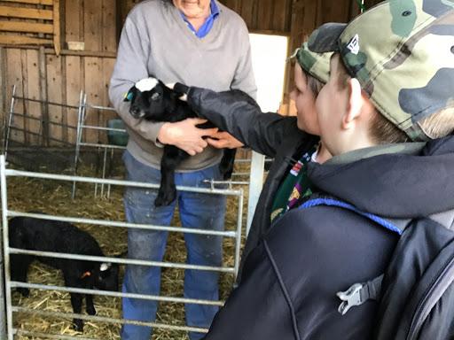 Iza och Tor klappar ett nyfött lamm.