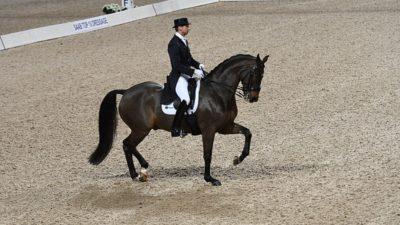 Patrik Kittel rider på den svartbruna hästen Delauney under Grand Prix 2018