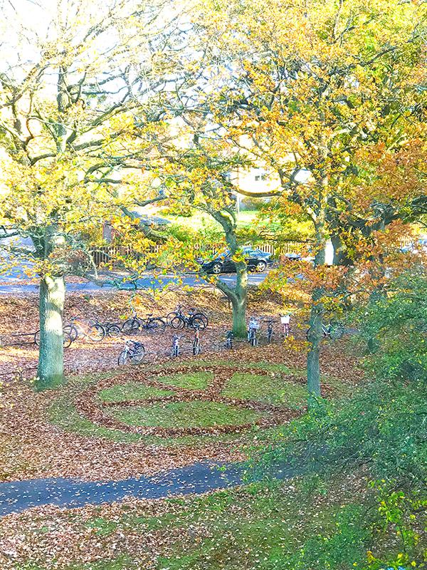 Fredssymbol gjord av bortkastade löv.