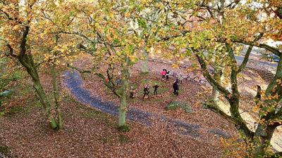 Fredssymbol gjord av bortkastade löv och skolbarn som leker.