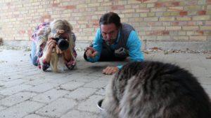 Greta Gräv och Dag Blad försöker ta kort på en katt