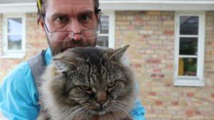 Dag Blad håller upp en katt